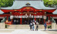 なるはやで結婚運UPしたいなら!アクセスが便利な生田神社!