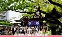 復縁運UPしたい!なら東京大神宮で神様に直接お願いしよう!